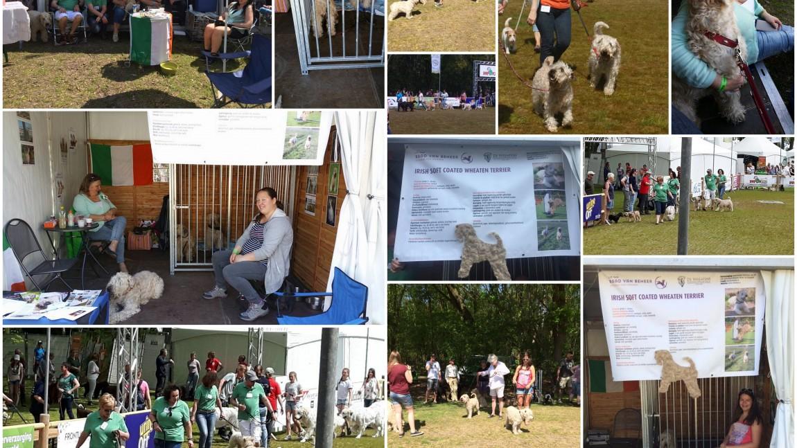 Drie dagen Animal Event